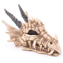 Dragon hucha en forma de craneo got