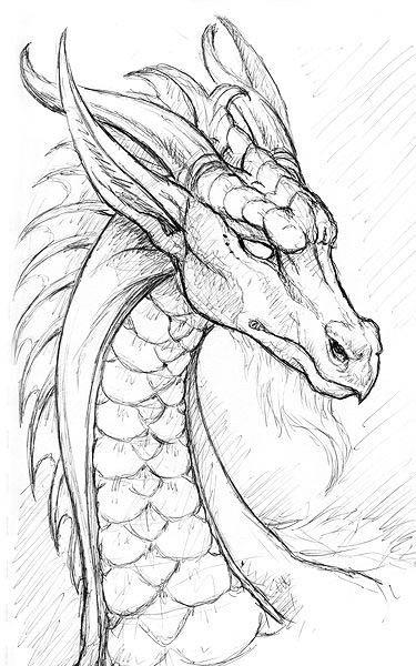 busto dragón del bosque aspecto sabio y pacifico